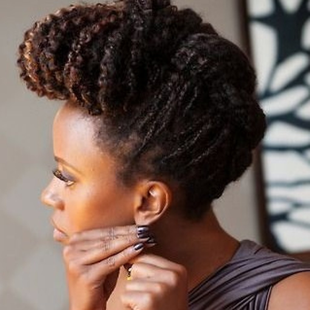 Coiffures de f tes afro 15 looks en images for Salon locks twists tresses