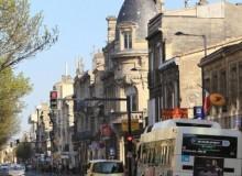 Coiffure afro à Bordeaux : un cru digne de sa région