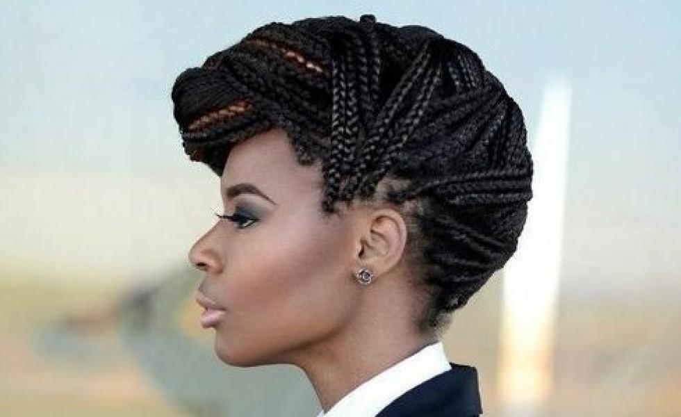 Coiffures De Fetes Afro 15 Looks En Images